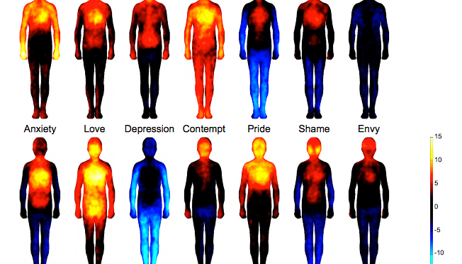 Emotion Mapping shows mind body connection